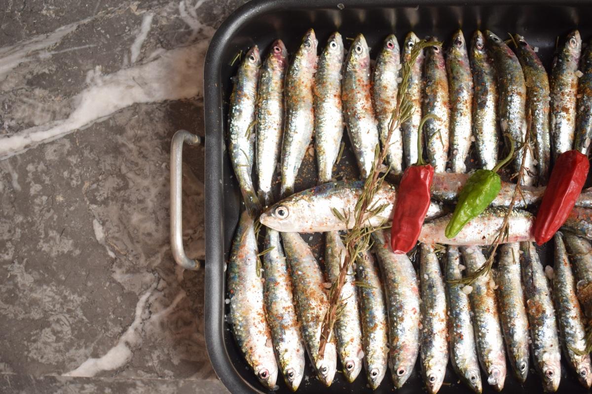 La sardine, un super aliment cuisiné aux couleurs du Maroc